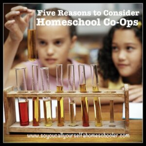 Homeschool Co-Ops