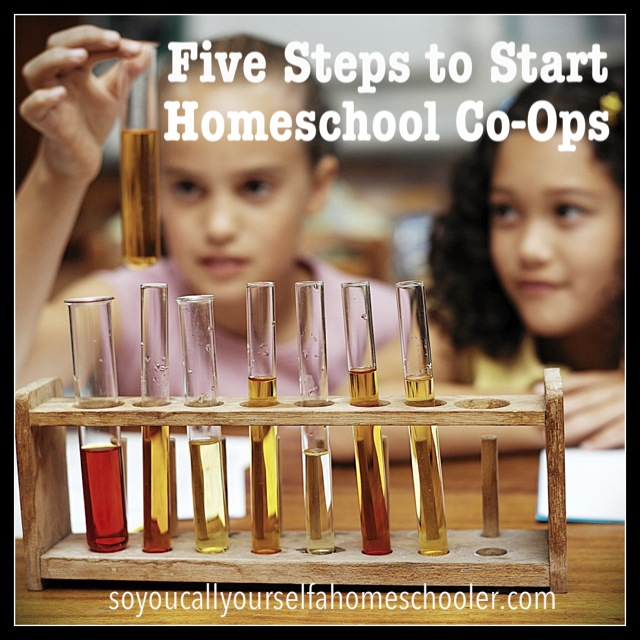 Five Steps to Start a Homeschool Co-Op