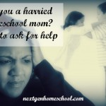 Harried Homeschool Mom? When to Get Help