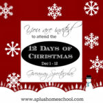 12 Days of Christmas Giveaway Event