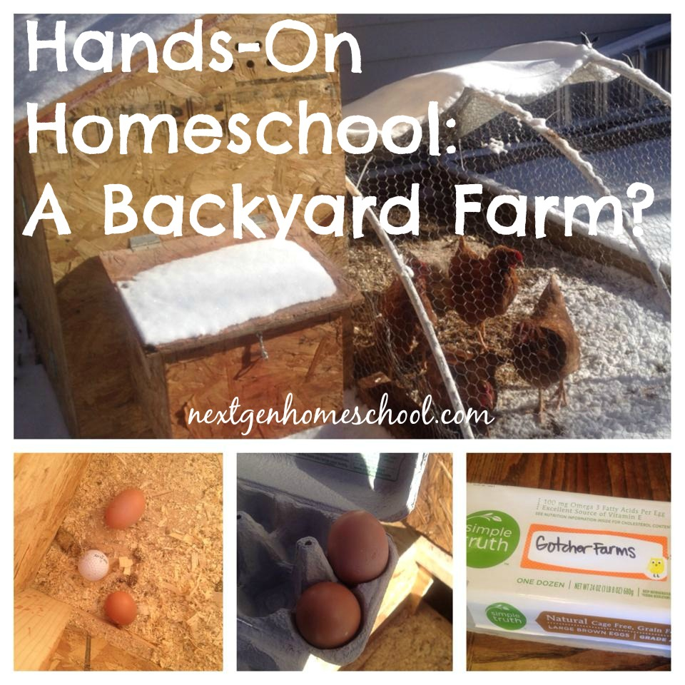 Hands-On Homeschool: A Backyard Farm?