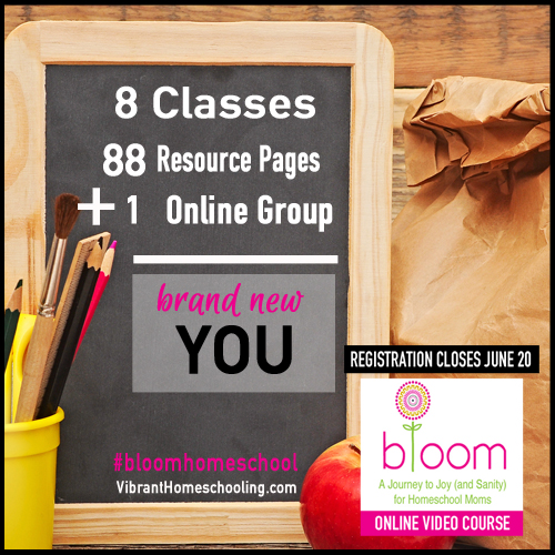 8-classes-88-pages-of-resources-online-community-new-mom